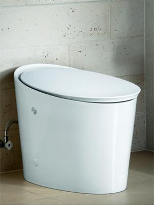 Kohler Avoir Toilet - Feature